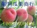 陕西桃子-油桃,毛桃,蟠桃