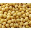 湖北伟望大量收购:大豆、玉米、油糠、米糠粕等饲料原料