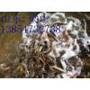 沧州出售泥鳅苗养殖价格黄鳝苗