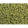 长期批发 陕西绿豆6500元/吨  及各种豆类
