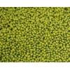 长期批发 黑龙江绿豆 及各种豆类