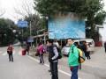 这里是进杨堤码头的路口 (1图)