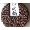 白皮松种子,华山松种子,油松种子,白皮松新种子