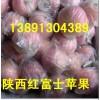 陕西膜袋红富士苹果产地红富士苹果价格行情苹果基地