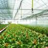 供应农业节水灌溉设备,农业灌溉设备
