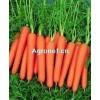 产地大量供应;胡萝卜,黄萝卜