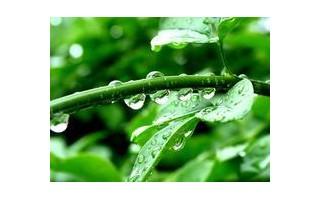 国务院发布实行最严格水资源管理制度的意见