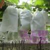 厂家直销葡萄袋葡萄套袋防鸟虫防水莱阳市欣旺果袋厂销售部