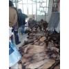 河北省特种皮毛养殖基地