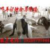 波尔山羊养殖场,贵州波尔山羊养殖场