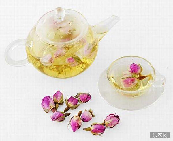 玫瑰花泡水喝的功效与作用