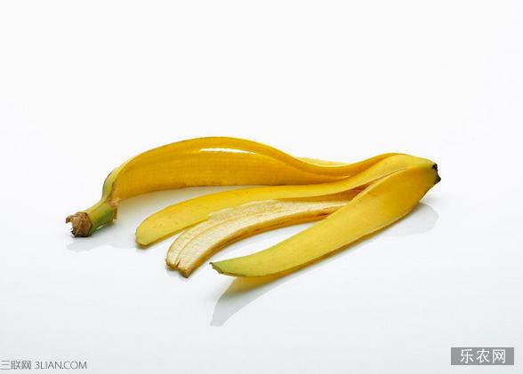 香蕉皮的生活妙用 乐农