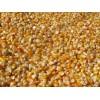 急购大量玉米、小麦、大豆等原料