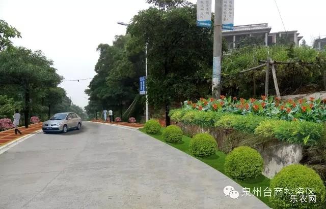 道路景观提升效果图-连瑞婵 发挥优势,助力美丽乡村建设