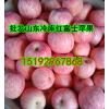 批发红富士苹果山东苹果产地批发价格