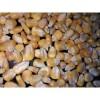 哪里收购玉米 惠侬常年求购玉米 高粱大豆碎米棉粕菜饼