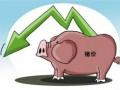猪价跌宕起伏的原因