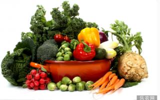 蔬菜是宝,吃错是福