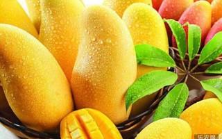 吃芒果对人体有什么好处和坏处?