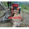 捕兔器-野猪捕猎机批发-保护伞工业公司