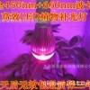 LED植物生长灯-RS232倾角传感器-北京西星光电科技有限