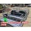 母猪产床怎么安装 母猪产床尺寸齐全 养猪设备生产销售