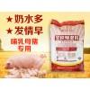 哺乳母猪预混料增加泌乳提高免疫 母猪饲料厂家直销