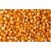 求购玉米小麦大豆高粱麸皮次粉等饲料原料