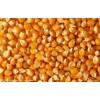 求购玉米大豆等
