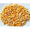 求购玉米600吨