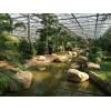 供应山东种植观光智能连栋玻璃温室