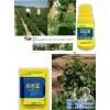禾奇正叶面肥用在农作物上的效果