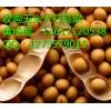 收购玉米的厂商高价收购玉米小麦大豆菜籽饼等(在线咨询)