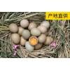 晟禾源生态农业野鸡蛋