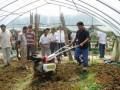 微耕机3马力小型柴油微耕机重庆微耕机价格重庆微耕机厂家