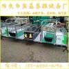 养猪设备 母猪产床 生产厂家