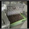 盆栽蔬菜播种机  点籽机 阳台种菜--常州风雷
