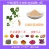 宁陕国圣药食同源白扁豆花提取物 厂家现货