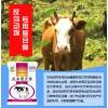牛羊用益生菌苏柯汉反刍菌多宝