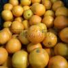麻阳冰糖橙,大电商直供甜橙界的王者,好品质量大价优