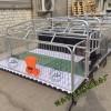 依安县养猪设备复合母猪产床什么价位