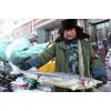 人工养殖鲟鳇鱼批发价格,人工养殖鲟鳇鱼多少钱一斤