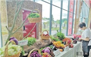 蔬菜节高峰论坛:产于青山绿水  味儿美自然新鲜