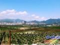 红色城市的发展绿色农业,大力发展农牧业污染治理技术性