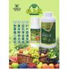瓜果蔬菜增甜增色提前上市剂蜜桔苹果柑橘增色增甜剂