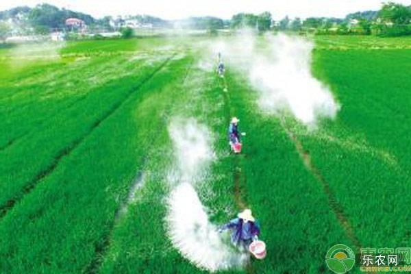 生石灰对农业生产都有哪些注意事项?