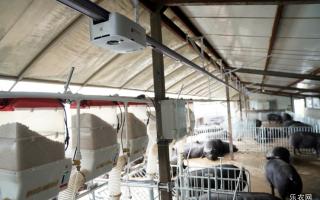 AI养猪、遥感杀虫和卫星种粮 智慧农业中国新希望
