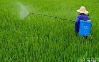 怎样鉴别农药是否已经过期失效?这5招值得收藏!