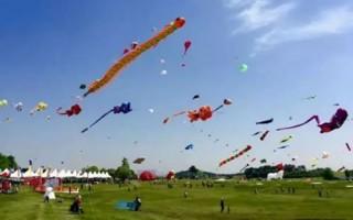 武汉木兰草原第二届国际风筝邀请赛落幕