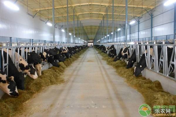 牛舍保暖的好处